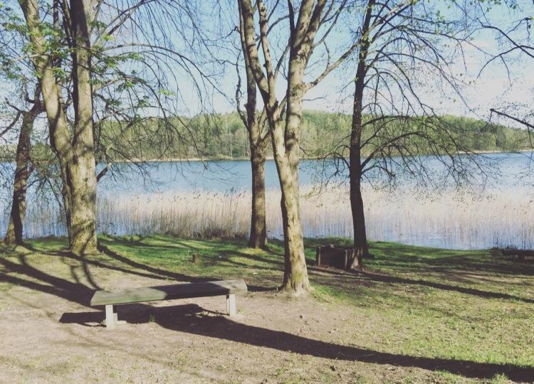 Panchina lago Galve a Trakai.