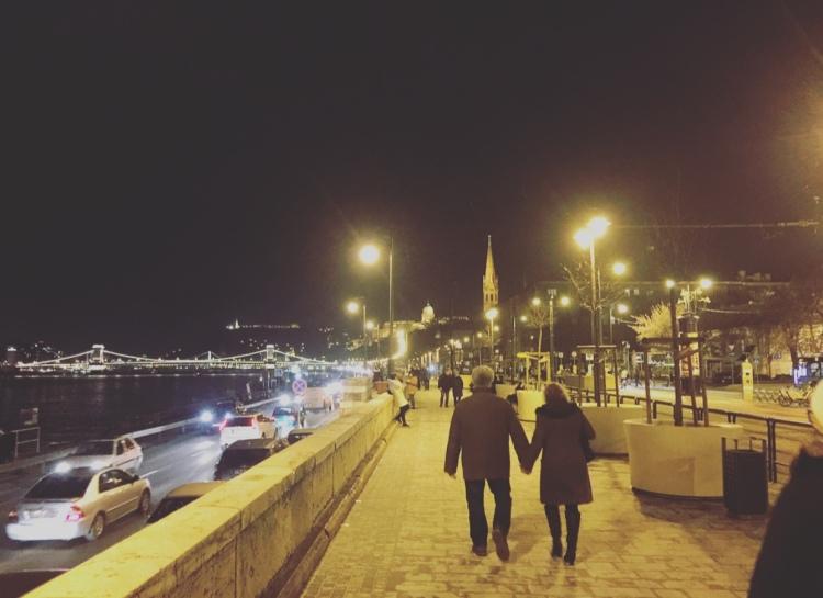 Ungheria, Budapest, lungo Danubio.