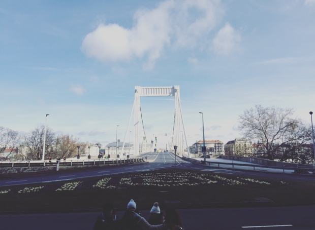 Ponte Elisabetta, Budapest, Ungheria.