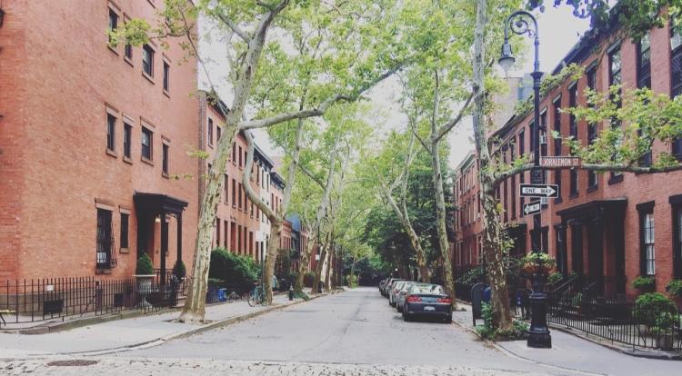 Clinton Hill, Brooklyn, New York, Stati Uniti.