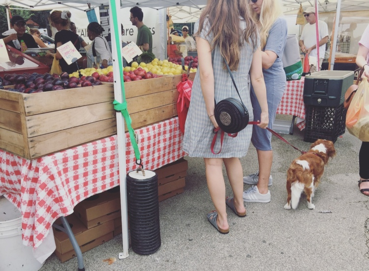 Grand Army Plaza green market, Brooklyn, New York.