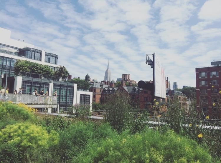 High Line, Manhattan, New York, Stati Uniti