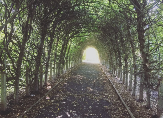 Giardino botanico, Staten Island, Manhattan, New York, Stati Uniti.