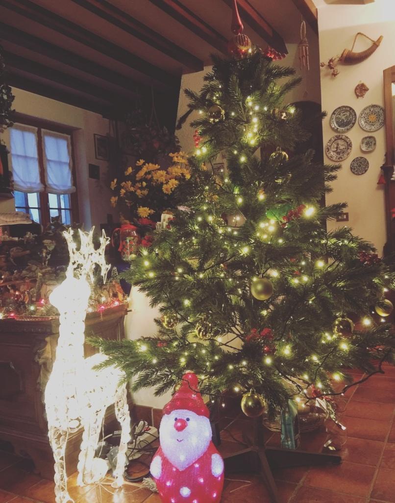 Albero di Natale, renna e Babbo Natale.